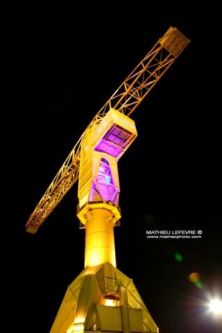 La-Grue-Titan-Jaune-de nuit_0EFW0823
